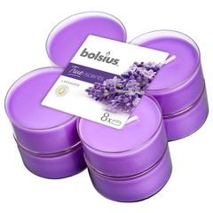 Bolsius Maxilicht geur true scents lavender (8 stuks)