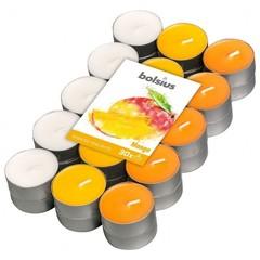Bolsius Geurtheelicht multi colour brick 30 mango (18 stuks)