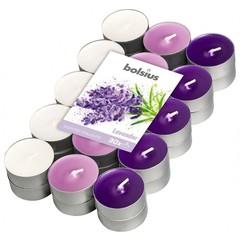 Bolsius Geurtheelicht multi colour brick 30 lavendel (18 stuks)