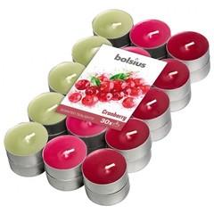 Bolsius Geurtheelicht multi colour brick 30 cranberry (18 stuks)