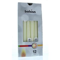 Bolsius Gotische kaars 245/24 ivoor (12 stuks)