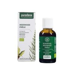 Purasana Puragem heermoes bio (50 ml)