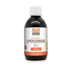 Mattisson Aquasome liposomaal vitamine B12 1000 mcg (250 ml)
