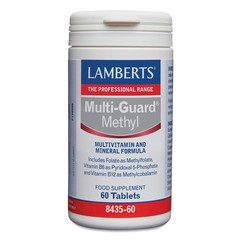 Lamberts Multi guard methyl (60 tabletten)