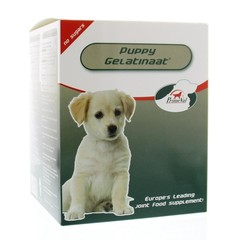 Primeval Gelatinaat puppy (350 gram)