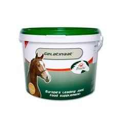Primeval Gelatinaat paard (5 kilogram)