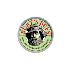 Burts Bees Res-q ointment/ zalf (15 gram)