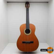 Hudson Hudson HC1-39 akoestische gitaar