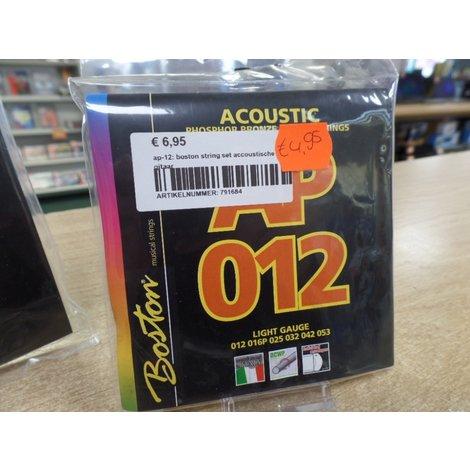 ap-12: boston string set accoustische gitaar