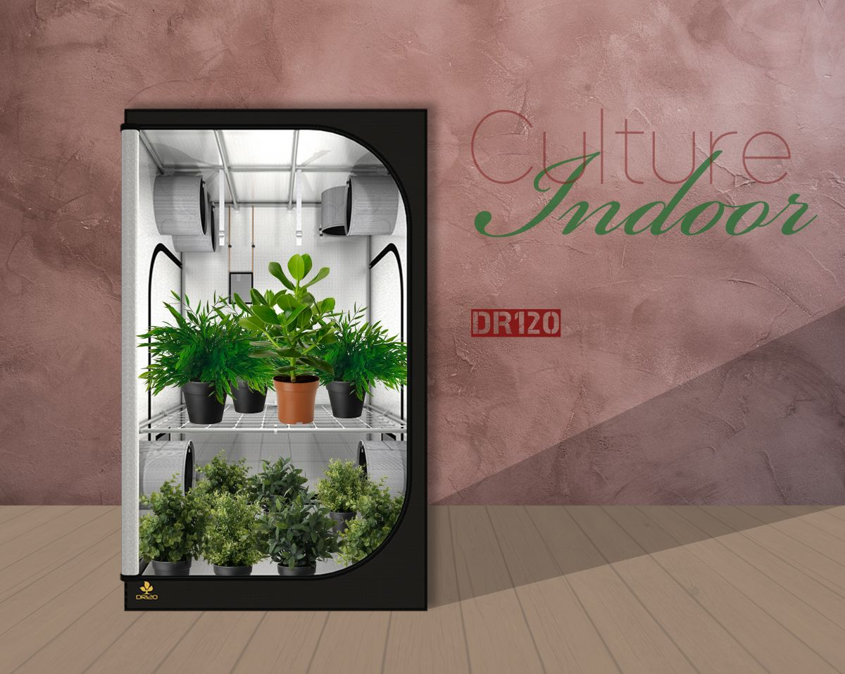 Dark Room Grow Tent Secret Jardin