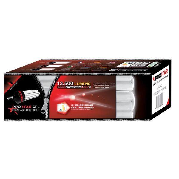Prostar CFL Spaarlamp 300W Bloei