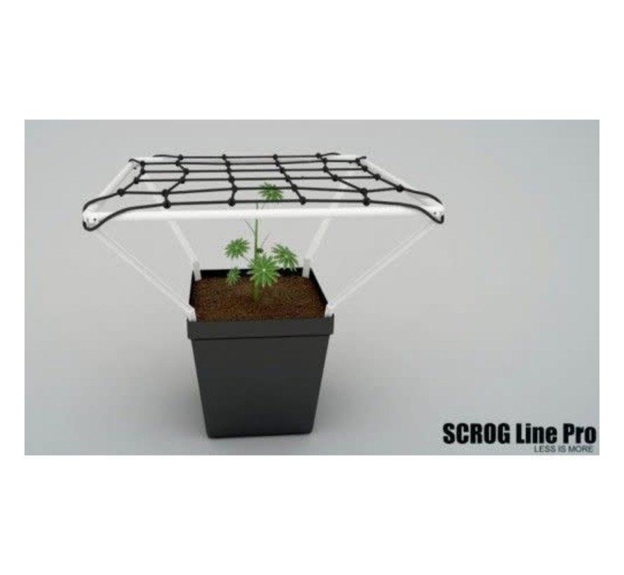 Scrog Line Pro
