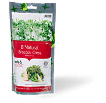 Baza Verse mini Broccoli in kweekzak