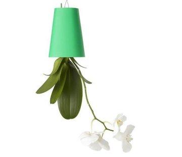 Boskke Sky Planter Recycled Flower Pot Green Small