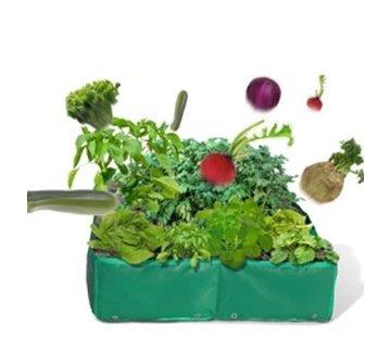 ACD Moezzie groen