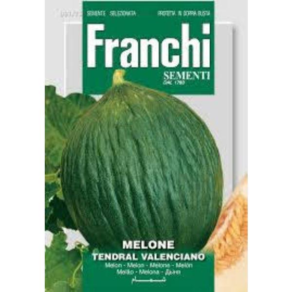Meloen - Melone Tendral Valenciano