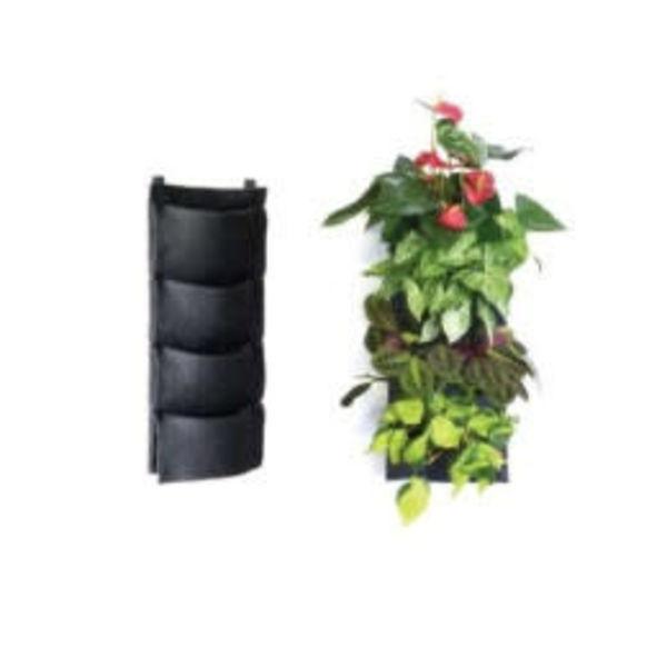 Flora fpanel F4