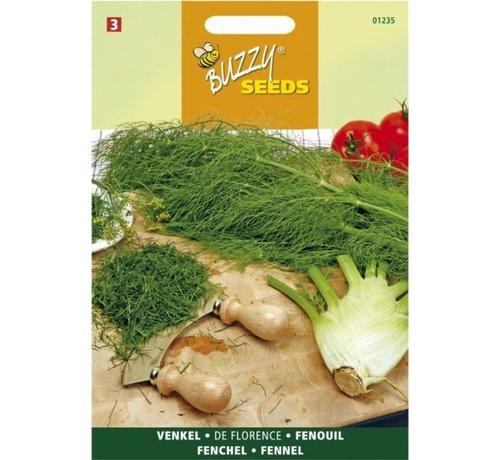 Buzzy Seeds Venkel de Florence