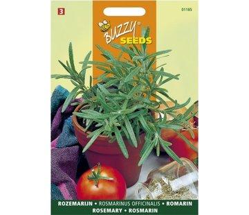 Buzzy Seeds Rozemarijn