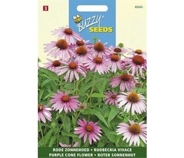 Buzzy Seeds Echinacea purpurea rode tinten