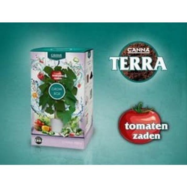 Terra Grow Box Tomaat