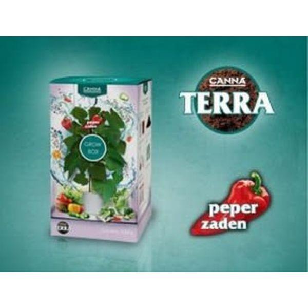 Terra Grow Box Peper