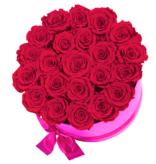 Rosuz Flowerbox Longlife Ciara Roze