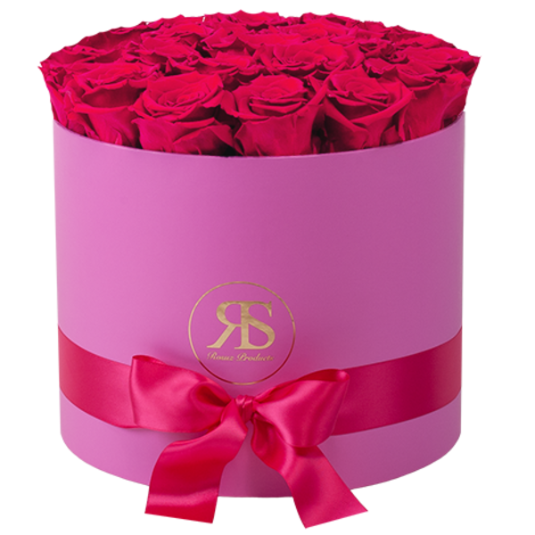 Flowerbox Longlife Ciara Roze