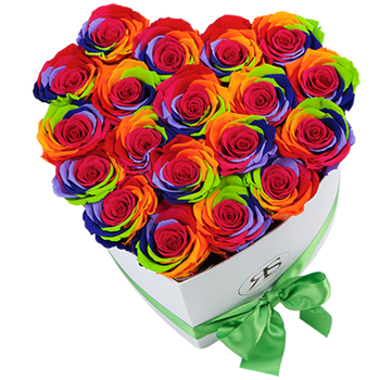 Rosuz Flowerbox Longlife Ella Rainbow