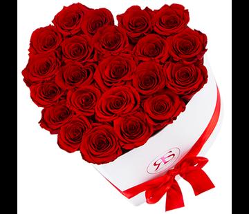 Rosuz Flowerbox Longlife Ella Rood