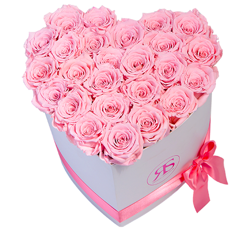 Rosuz Flowerbox Longlife Ella Roze