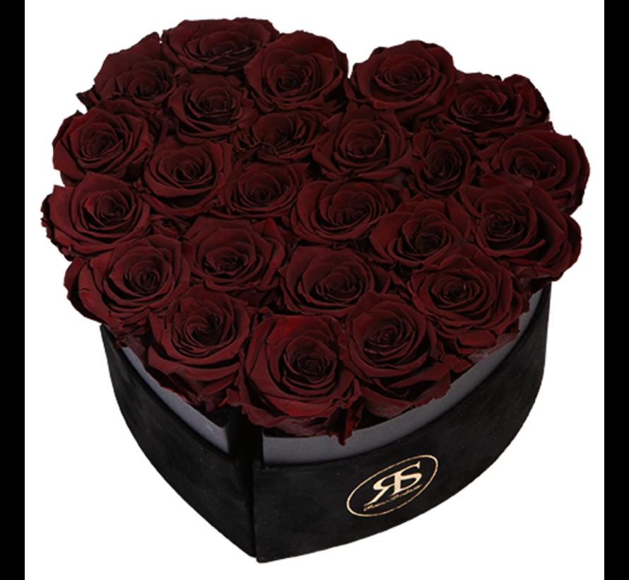 Flowerbox Longlife Mary J Choco