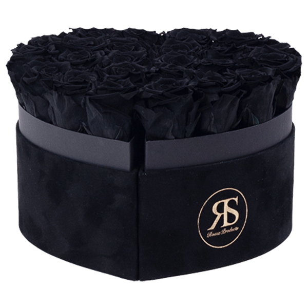 Flowerbox Longlife Mary J Zwart