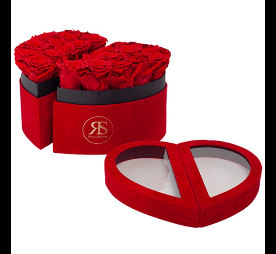 Flowerbox Longlife Scarlet Rood