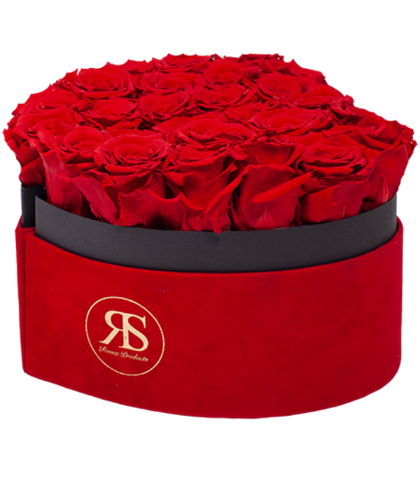 Rosuz Flowerbox Longlife Scarlet Rood