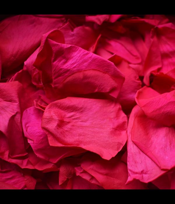 Rosuz Rozenblaadjes Longlife Roze 25 Gram