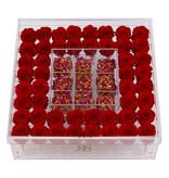 Rosuz Flowerbox Longlife  Khloe Rood