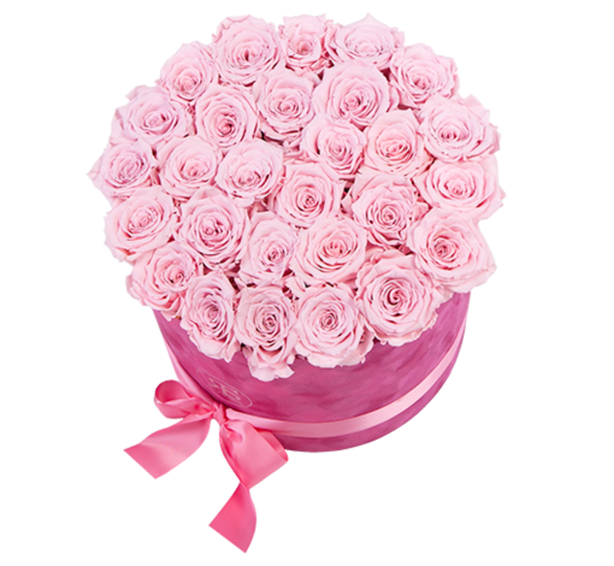 Flowerbox Longlife Suzy Licht Roze