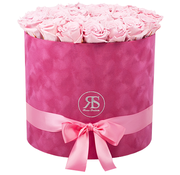 Rosuz Flowerbox Longlife Suzy Light Pink