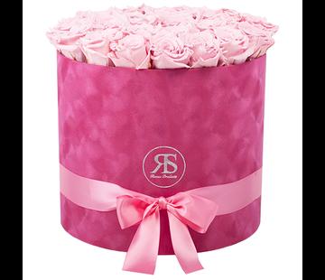 Rosuz Flowerbox Longlife Suzy Licht Roze