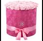 Flowerbox Longlife Suzy Hellrosa