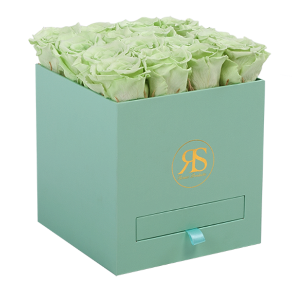 Flowerbox Longlife Louise Lichtgroen