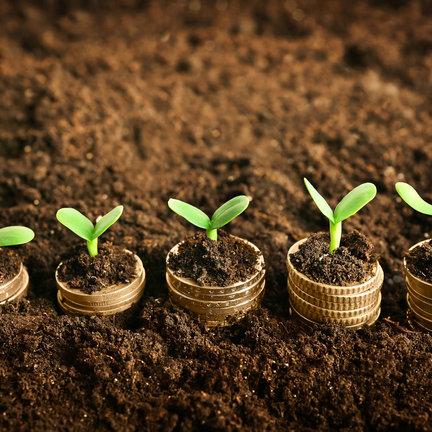Nutrients & growing media