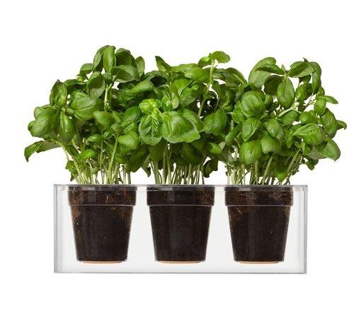 Boskke Cube Planter 3 Small