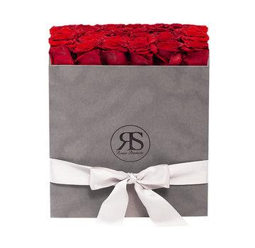 Rosuz Flowerbox Longlife Celine Rood