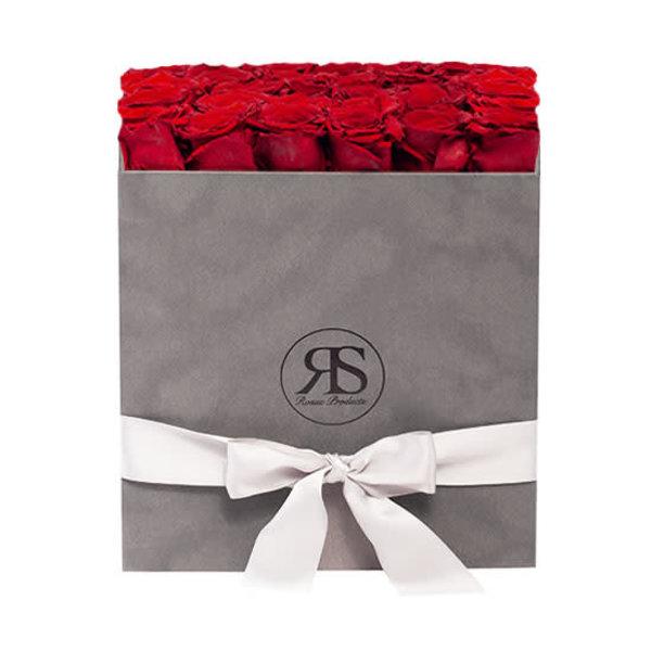 Flowerbox Longlife Celine Rood