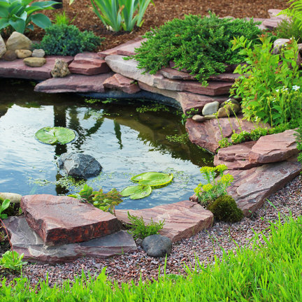 Pond foils with different dimensions