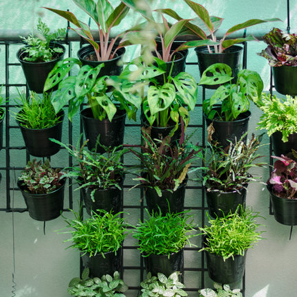 Plantenbakken & kweekpotten