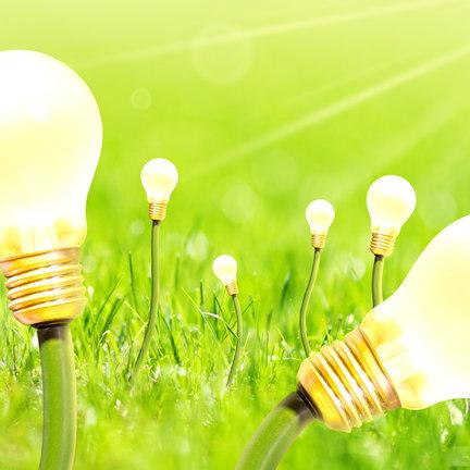 Growlampen & beleuchtung