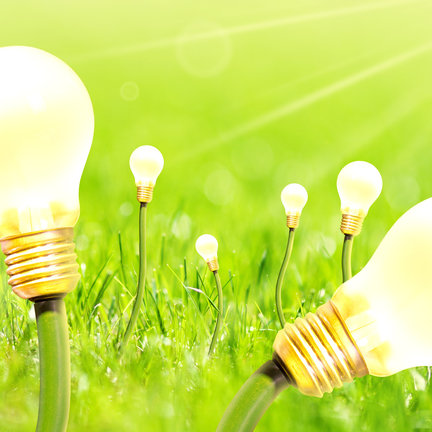 Kweeklampen & verlichting